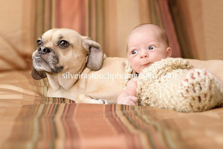 newborn photographer lincoln park NJ