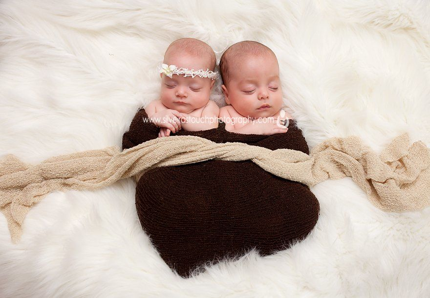 twin newborn photography ridgewood nj