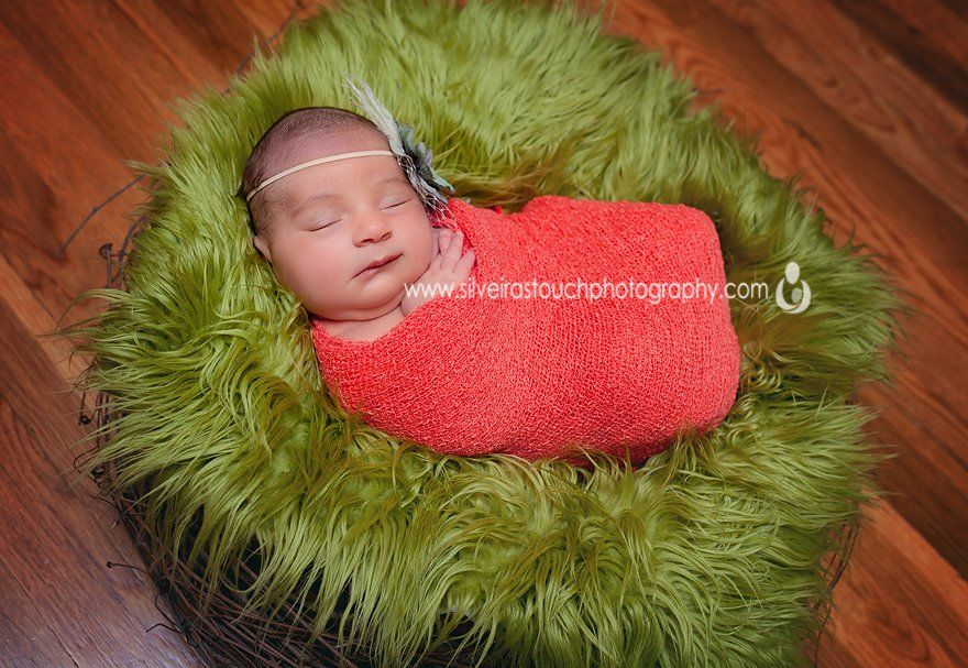 cedar grove nj newborn photographer