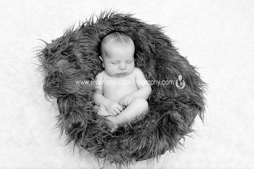 new providence NJ newborn photos