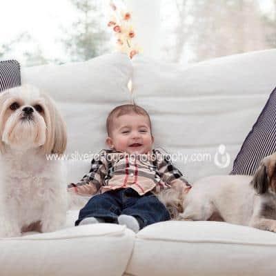Protected: Cuteness Livingston Children Photographer