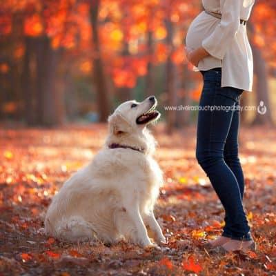 verona nj maternity photographer
