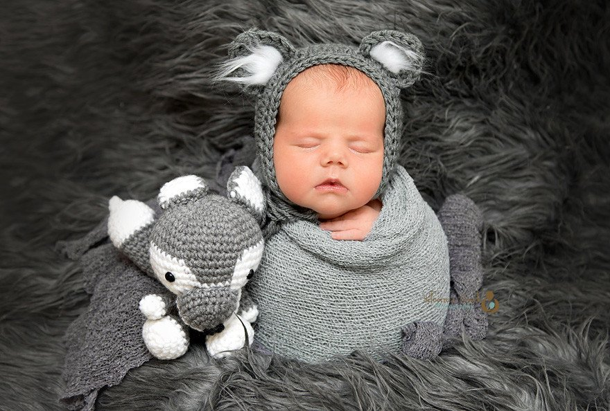Succasunna nj newborn photography of sleeping baby with stuffed Wolf baby