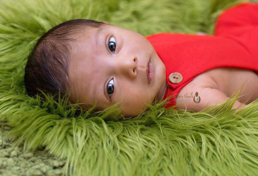 newborn photography parsippany nj