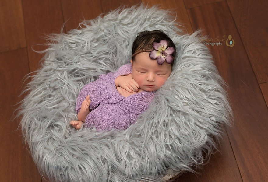 Wallington nj Newborn photographer