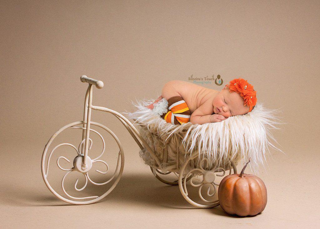 Pumpkin baby photo nj