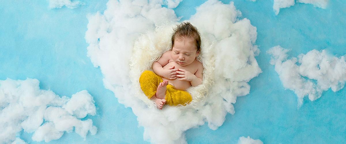 newborn maternity photography website