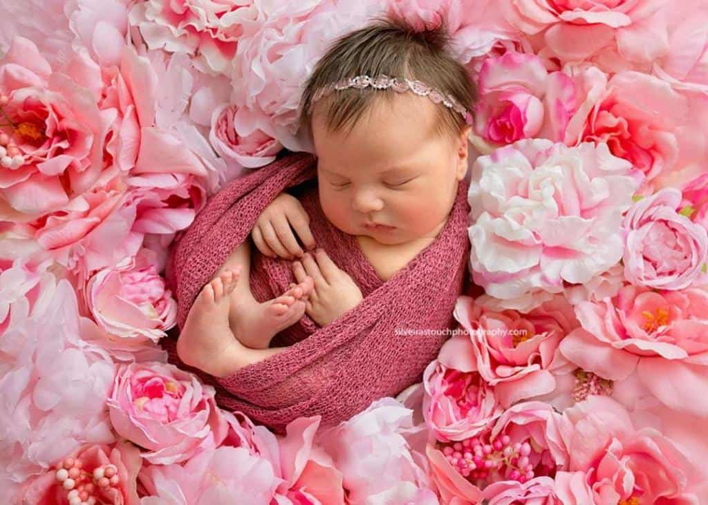 Flanders NJ Newborn Phortography on flower