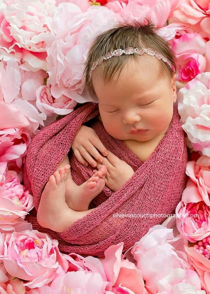 newborn phtoography on flower bed